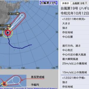 フィリピーナの危機管理!台風19号