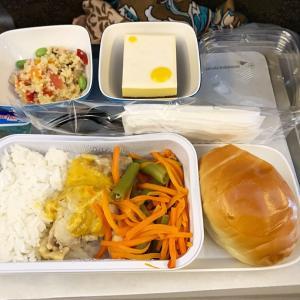 【バリ新婚旅行】ガルーダインドネシア航空の機内食レポート
