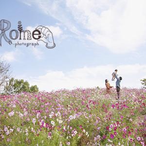 《バースデーフォト》憧れのコスモス畑で家族写真を撮ってみたい!!