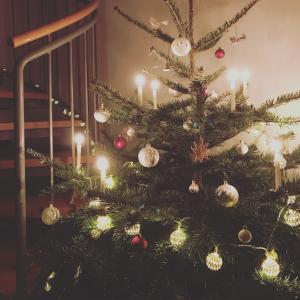 2016クリスマスと年末の反省。