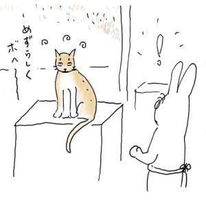 ビワコちゃんの爪切り。