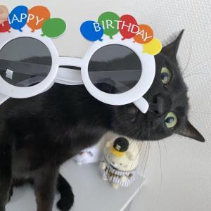 みんなでお祝い?