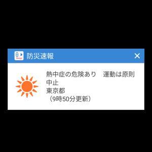 暑すぎる(-_-;)