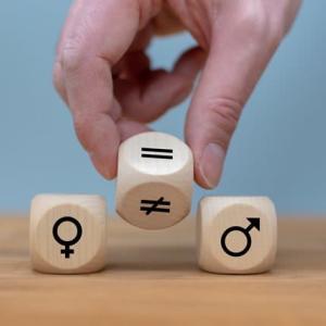 ジェンダー平等への疑問