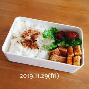 快晴のリセット日と今日のお弁当