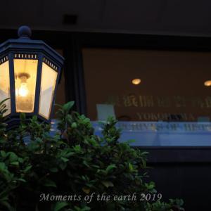 宵の横浜 EOSRP EF50ミリ