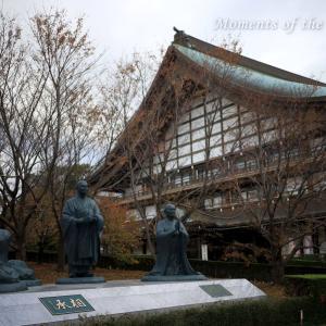 冬を迎える日本のお寺 相承 CANON EOS RP RF35mmF1.8