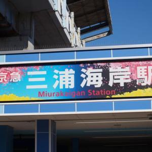 2020.2.11 三浦海岸 桜まつりに行ってきました~