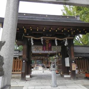 2019年の干支「亥」年の初詣はいのししにまつわる神社