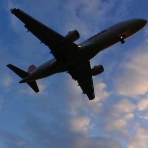 出雲大社に飛行機で大阪(伊丹)空港からアクセス