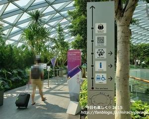 2019秋_3度目のシンガポール・・Canopy Park(キャノピーパーク)