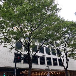京王プラザホテル 新宿