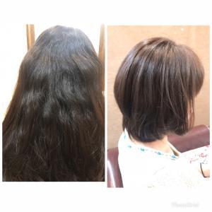 ハイダメージのくせ毛、一度で修正するには?