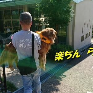 河童ケイチー復活動画でち!