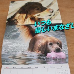 カレンダーに想いを込めて・・・