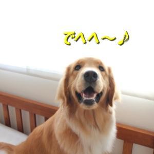 ケイチー アーカイブ ☆