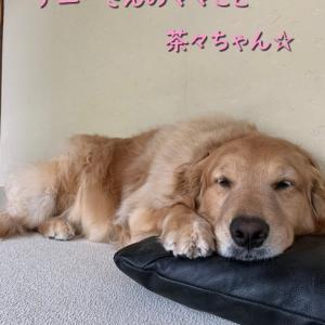 ママのお誕生日 ☆