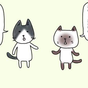 【四コマ】神社ネコ〜伊勢神宮②〜