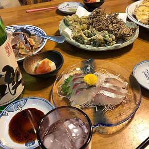 タラの芽&ふきのとうの天ぷら!