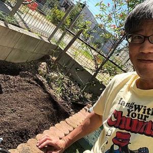 我が家のミニ畑の植え込み作業!