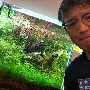 水草トリミング&いよいよ熱帯魚投入!