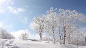 いまが厳寒期(真冬の頂点)の北海道…北斗市