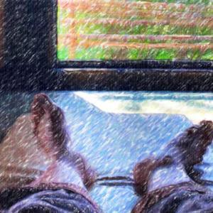 雅楽の湯でまた伸びる@夏向きの泉質かも?