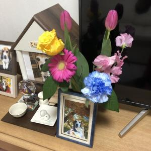 パパが選んだ花を添えて