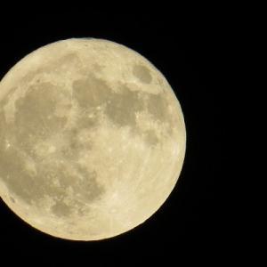 【短歌日記】太陽も 月も同時に 空に有り。 蕪村の名句 非凡なること /// 「菜の花や月は東に日は西に」与謝蕪村の切り取った風景の妙。