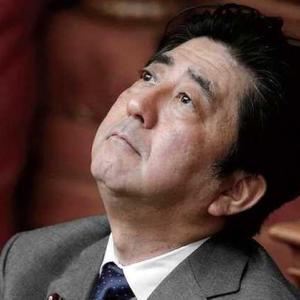 【短歌日記】私物化も 「これまで」と知れ 安倍総理 桜汚した 報いを受けよ /// 人間も政党も、権力に溺れると、何もかも自分のものに見えるらしい。