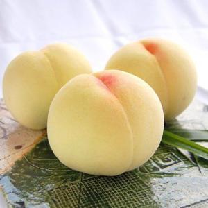 【短歌日記】次々と 集まる桃の かぐわしき 匂い薫れる 岡山の今 /// いま桃が全盛期の岡山。それに影を差すコロナ感染の増。