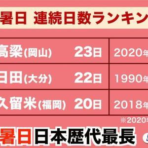 【短歌日記】猛暑日の 最長記録 達成の わが故郷に 未来危ぶむ /// 岡山県高梁市。観測史上初の23日連続猛暑日の日本記録達成とか。地球温暖化の行き着く先が心配になります。