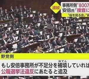 【短歌日記】メモを手に 仏頂面で 答弁し さらす醜態 総理の無様 /// 野党の追及に、すべて、まともに答えられない菅総理。なぜこんな人物が総理に成れたのだろうと思ってしまう。