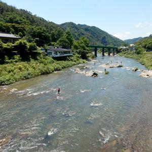 初夏になると県北でよく見る風景