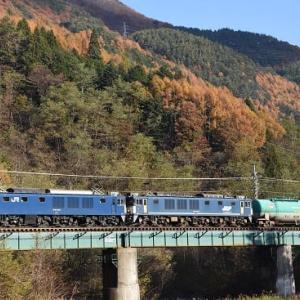 本日の撮影 その2 中央西線貨物6088レ(原色+広島更新色)と8084レより