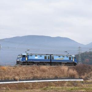 本日撮影 中央東線貨物2083レは荷無しの単機です!