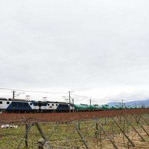 本日の撮影 中央西線貨物6088レと8084レより