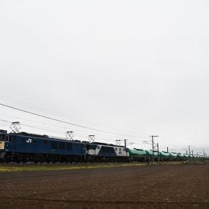 本日撮影 雨の中央西線貨物6088レと東線貨物2080レと2083レより