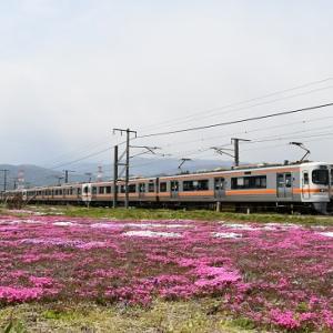 4月26日撮影 芝桜と313系ナイスホリデー木曽路と・・