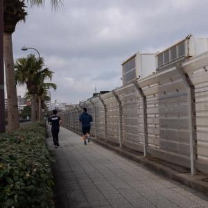 よこすか海岸通り(4)