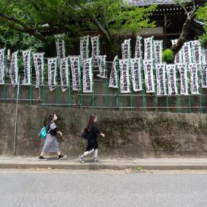 鎌倉散歩(6)