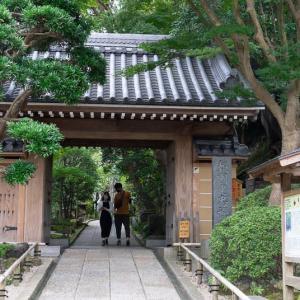 鎌倉散歩(3)