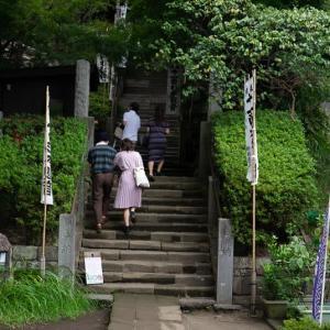 鎌倉散歩(4)