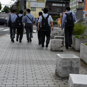東海道藤沢宿(6)