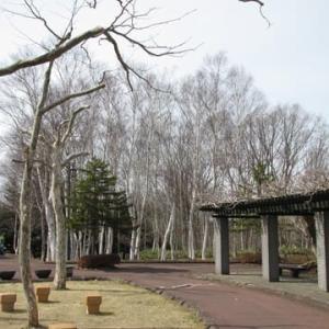 「市民の森をお散歩。」