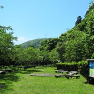 「函館山の宮の森コースを散策。」