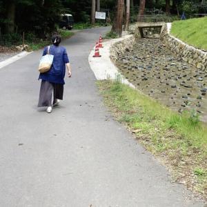 676.岩瀧寺と、独鈷の滝