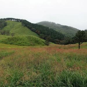 678.雨の砥峰高原