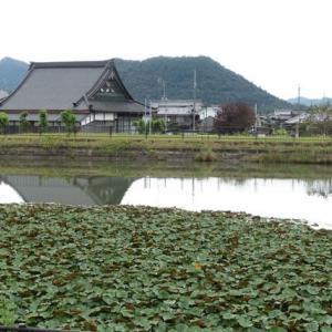 680.道の駅北播磨エコミュージアム