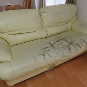 迷い続けて 約1年…やっとソファーを買い替えましたわ。
